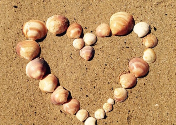 Heart made of shells on beach