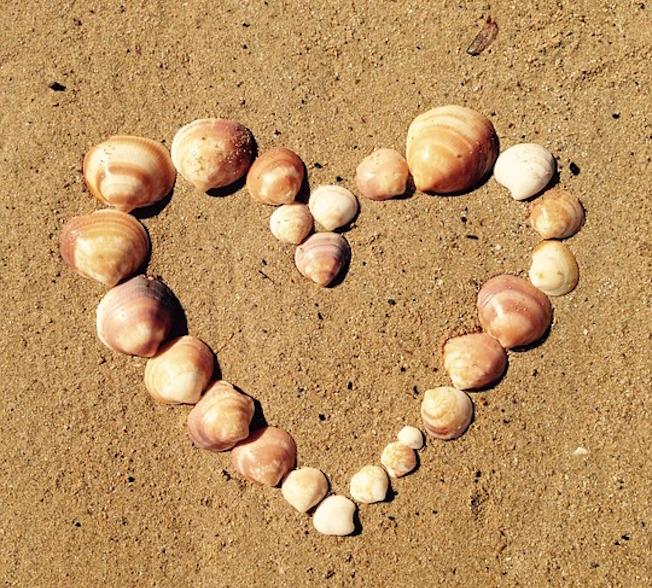Heart made of shells on beach